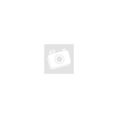 Bloodborne- A kártyajáték
